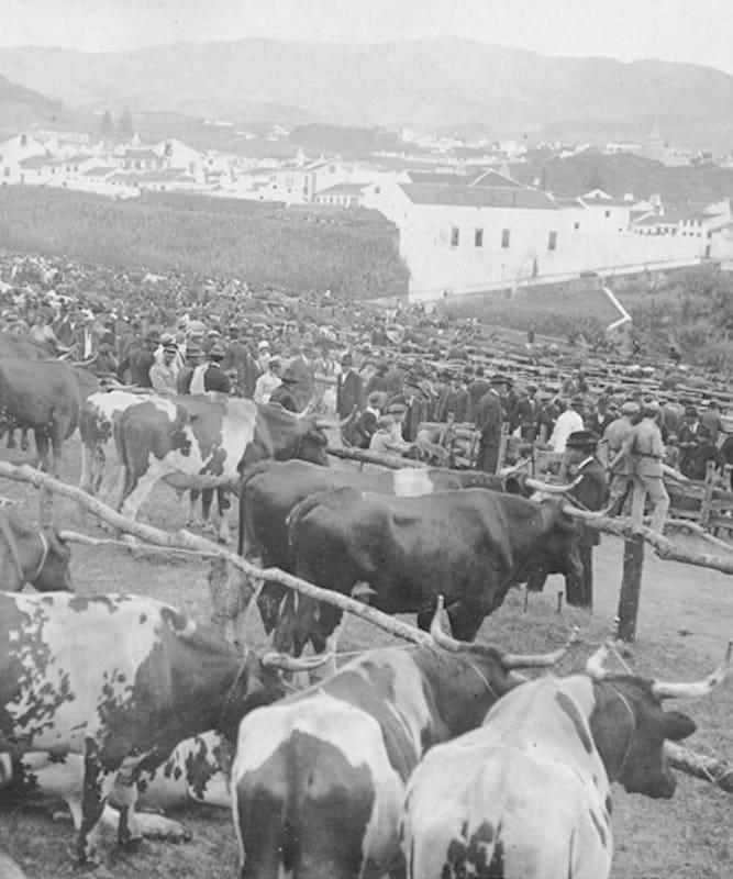 Azores Meet Bio Ramo grande a historia